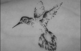 קעקוע ציפור