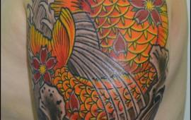 דג קוי יפני